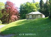 Hulne Park, Alnwick. (C) Bruce Hewison