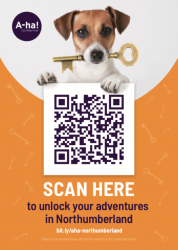 Click or SCAN to unlock your adventures in Northumberland